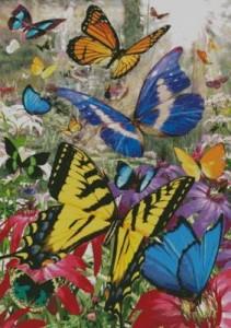 Схема Тропические бабочки