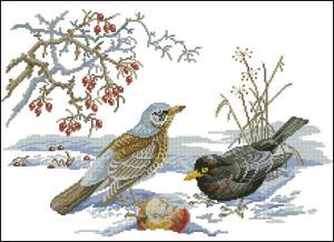 Схема Зимние птицы
