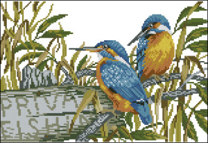 Схема Зимородки