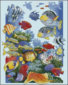 Схема Морское изобилие