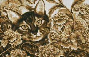 Схема Кот в бархатцах