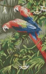 Схема Попугаи