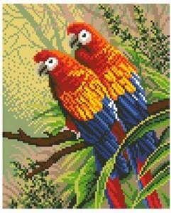 Схема Попугайчики