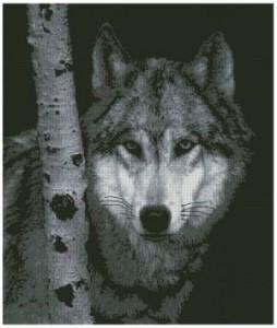 Схема Волк- одиночка