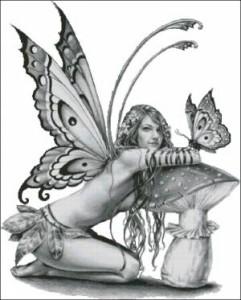 Схема Эльфиня
