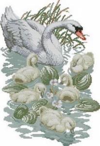 Схема Лебеди и птенцы