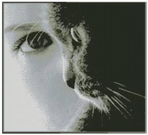 Схема Глаза в глаза