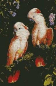 Схема Розовые попугаи