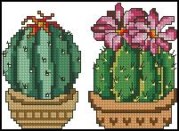 Схема Два кактуса