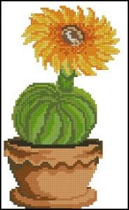 Схема Цветущий кактус 1