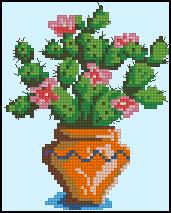 Схема Цветущий кактус в горшочке