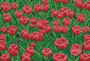 Схема Красные тюльпаны