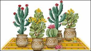 Схема Пять кактусов