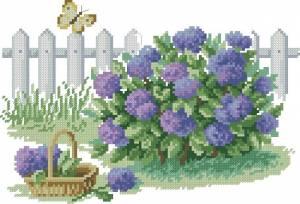 Схема Сад радости