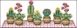 Схема Цветущие кактусы на столе