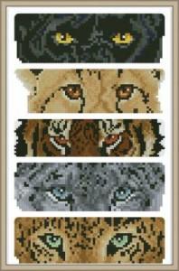 Взгляды диких кошек