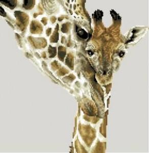 Материнская преданность (жирафы)