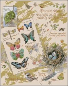 Схема Сэмплер Бабочки и птички