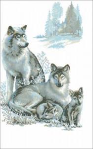 Схема Волки зимой