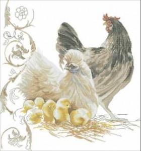 Схема Куриная семья