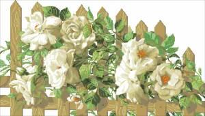 Схема Розы на перголе
