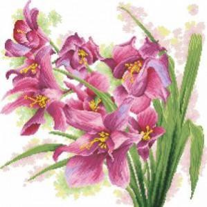 Схема Орхидеи / lovely orchids