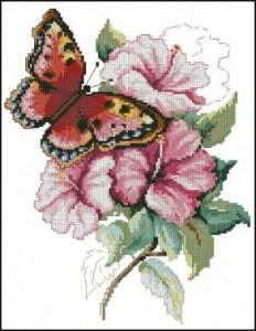 Схема Гибискус и бабочка