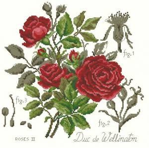 Схема Роза (красная)