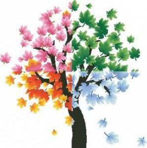 Схема Сезонное дерево