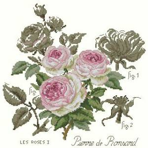 Схема Роза (нежная)