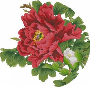 Схема Цветок красный