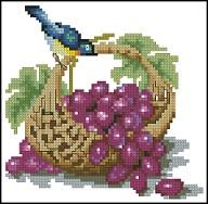 Птичка и виноград
