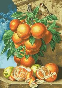 Апельсины и щегол