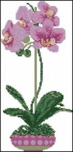 Схема  Сиреневая орхидея (фаленопсис)