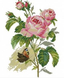 Схема Роза и бабочка