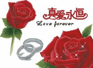 Обручальные кольца и розы