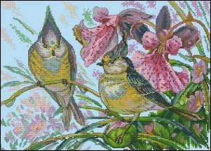 Схема Птицы и цветы