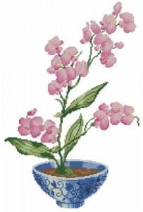 Схема Нежная орхидея