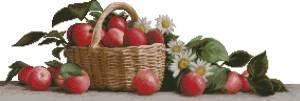 Яблоки и ромашки