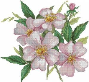 Розовый шиповник (светлый)
