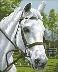 Схема Лошадь 1