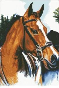 Схема Лошадь 3