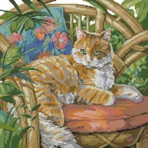 Кошка на солнце