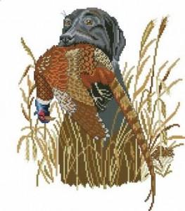 Охотничий пес с фазаном