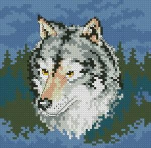 Схема Волк
