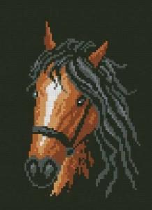 Схема Конь