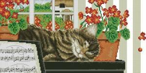 Люблю поспать (котенок)